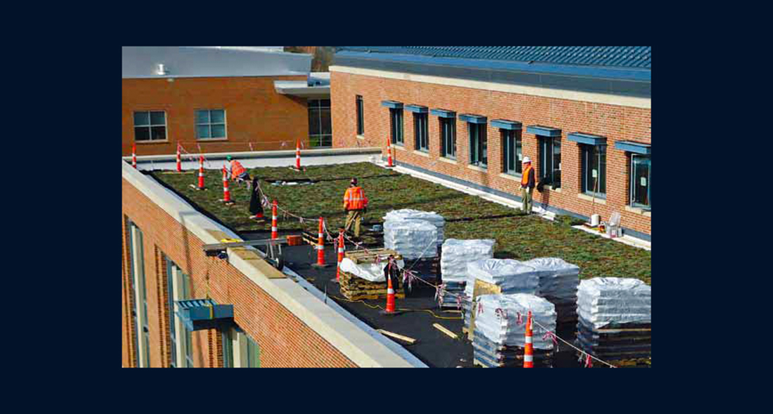 Webster University u201cGreen Roofu201d & Webster University